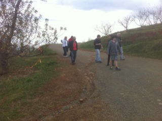 Hiking for apples in Virginia