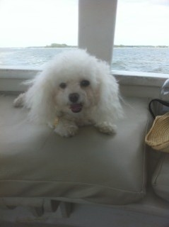 Stuart On Ferry to Daufuskie Island