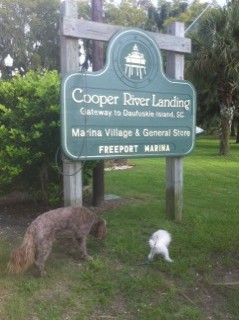 Jake And Stuart At Cooper River Landing Daufuskie Island